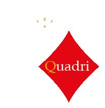 https://www.rediquadri.com